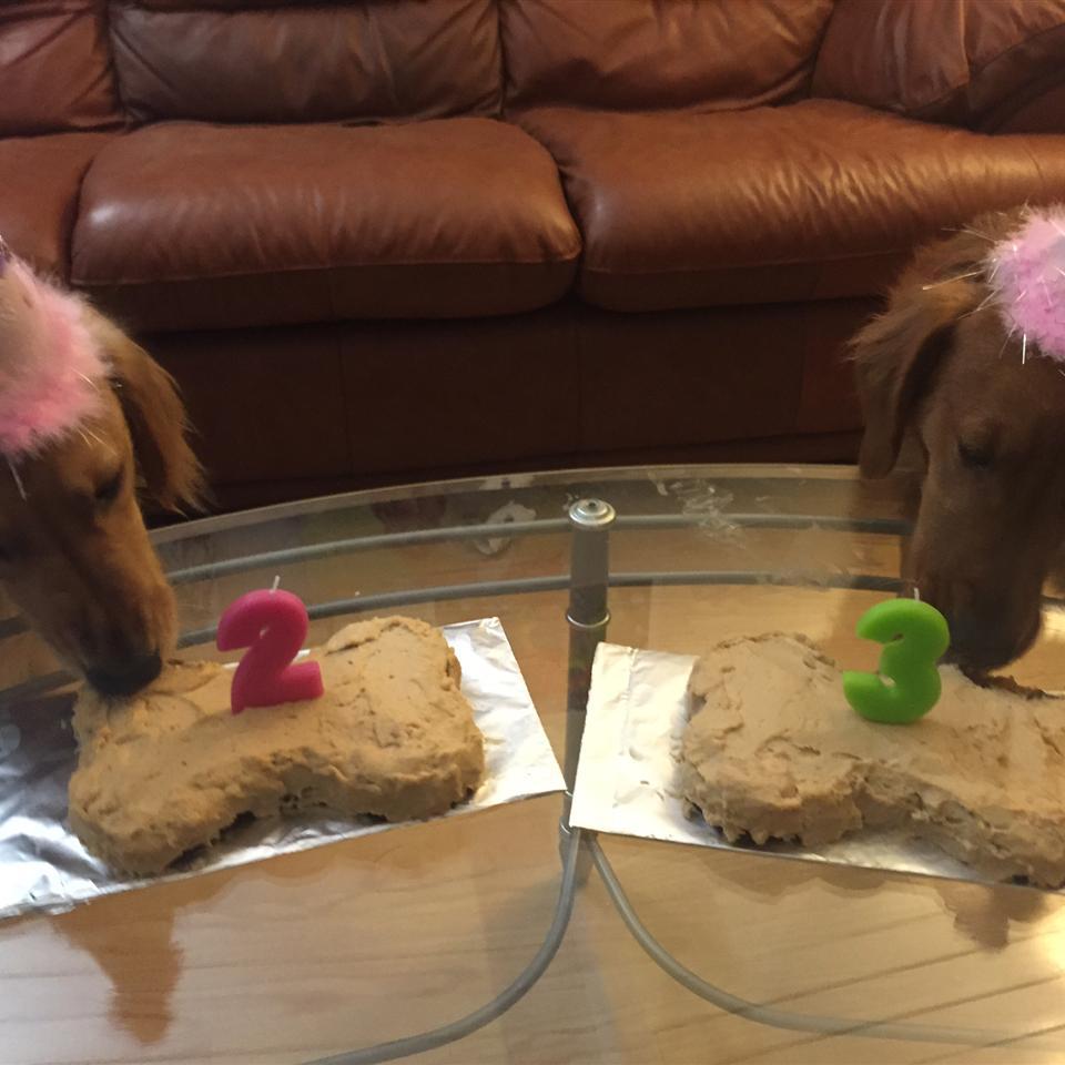 Doggie Birthday Cake Amanda Bodene