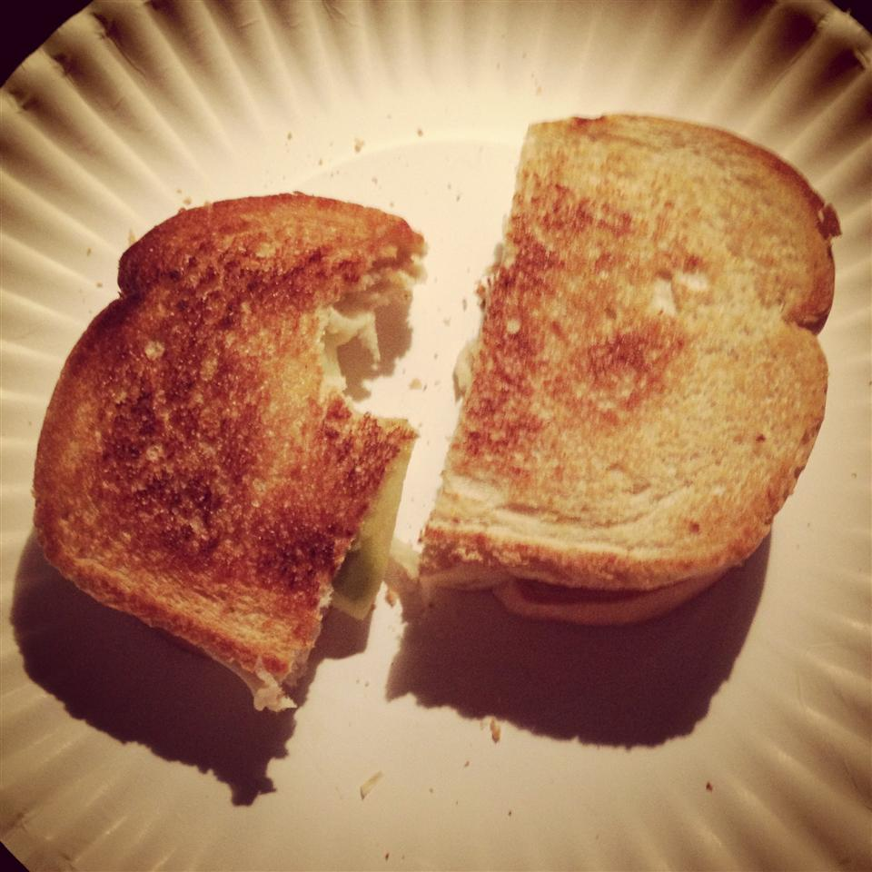 Grilled Apple and Swiss Cheese Sandwich shayda