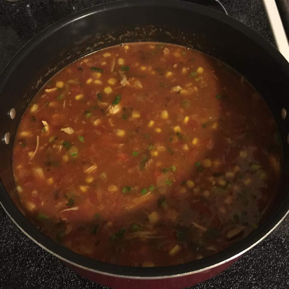 Tex-Mex Turkey Soup StephHinson27