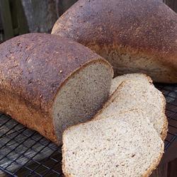 Westrup Whole Wheat Bread