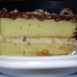 Boston Cream Pie I