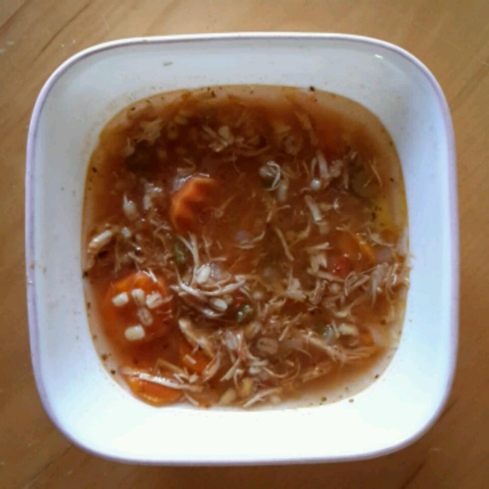 Zippy and Tangy Turkey Rice Soup Dan