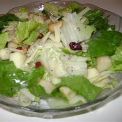 Winter Fruit Salad with Lemon Poppyseed Dressing tizzylizz