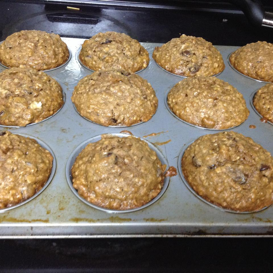 Chocolate Chip Oatmeal Cake queenb