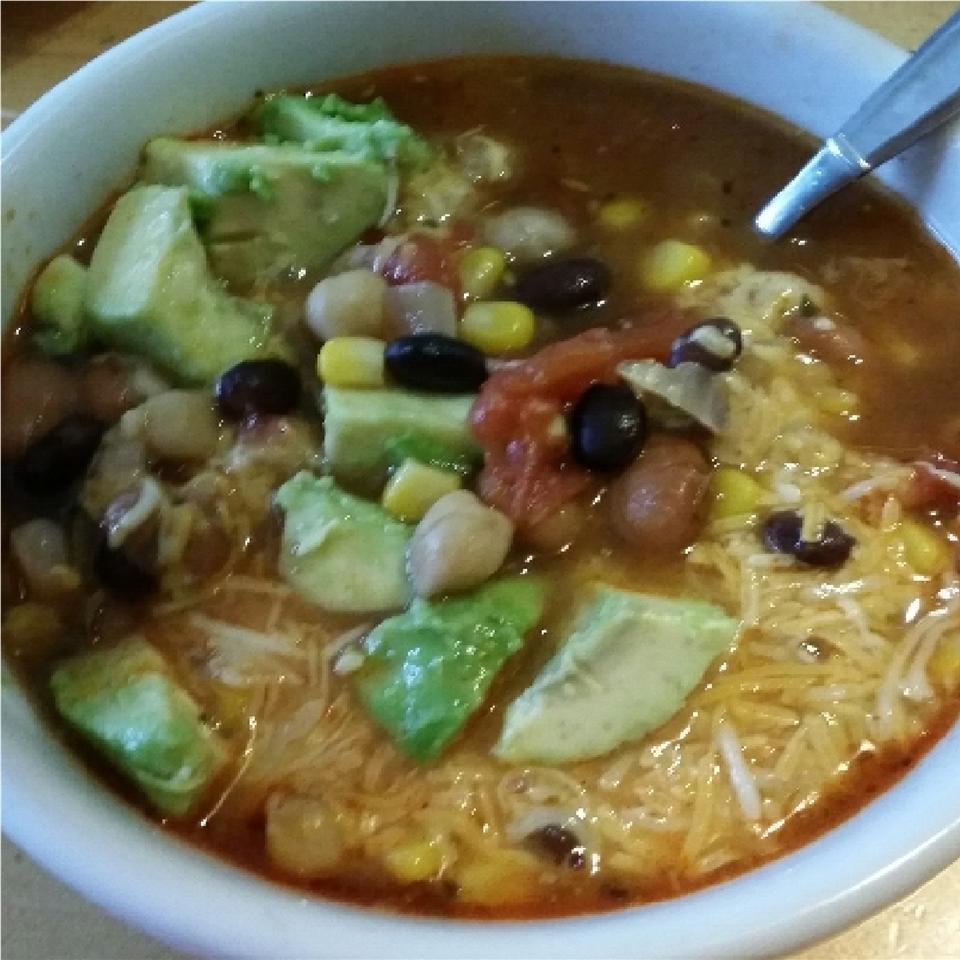 Spicy Tortilla Bean Soup linzianne
