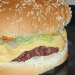 Delicious Grilled Hamburgers LashGal