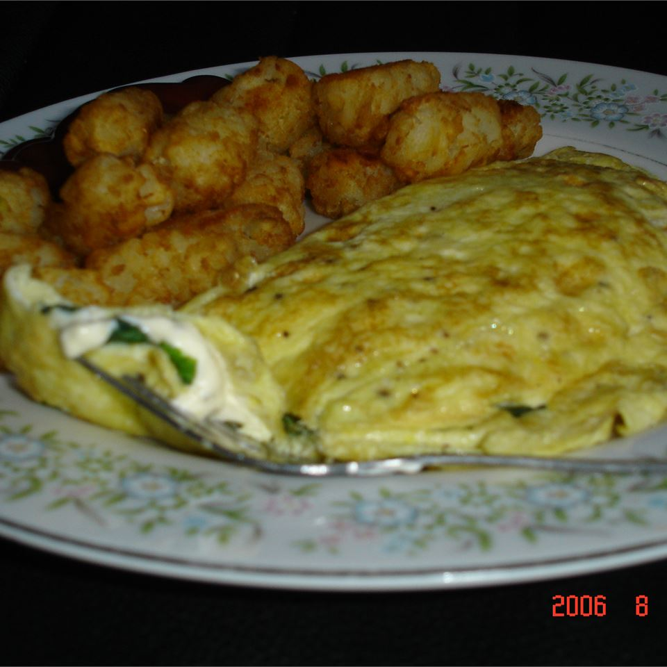 Herbed Cream Cheese Omelet MOLLE888