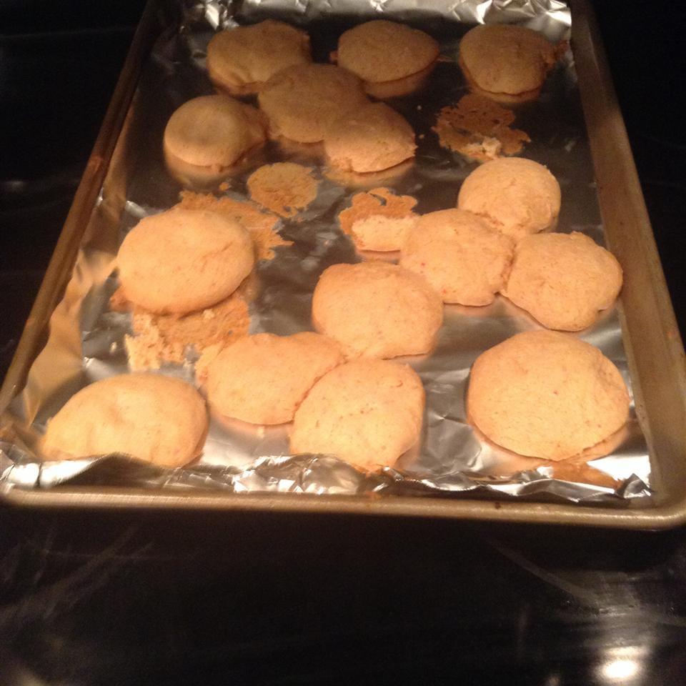 Cake Mix Cookies IV skater04