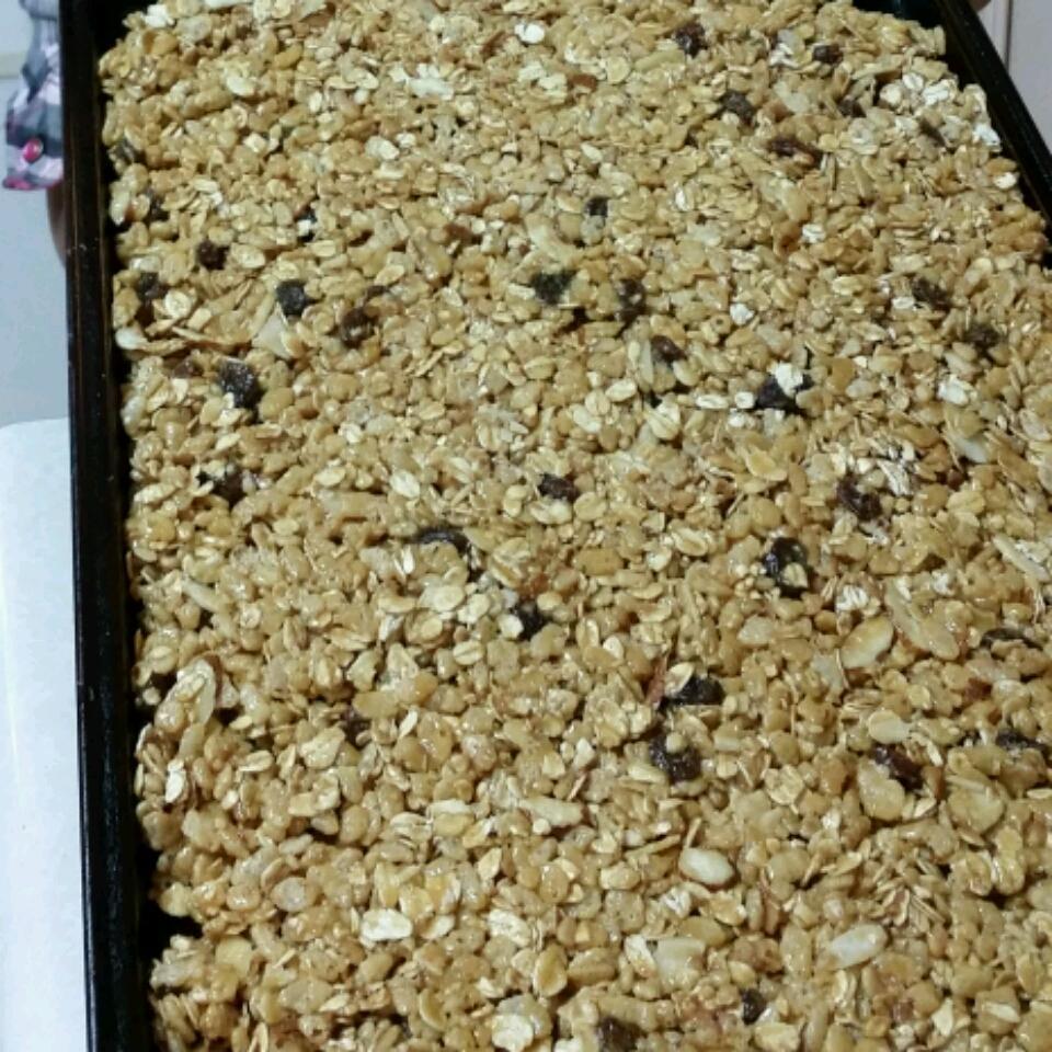 Gobble Up Granola Snacks Natalie Portis