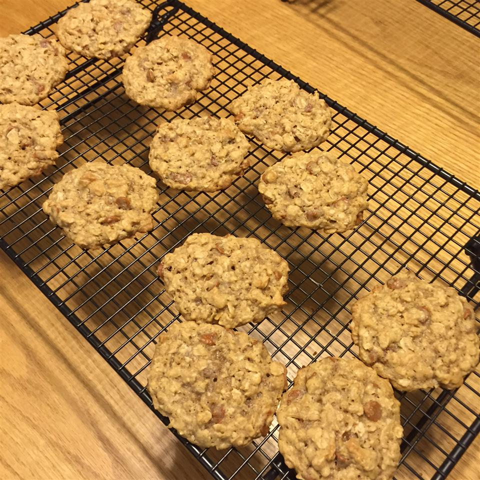 Oatmeal Cinnamon Cookies JennyLyn