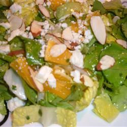 Orange Romaine Salad Fit&Healthy Mom
