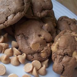Candi's Chocolate Peanut Butter Chip Cookies CookinBug