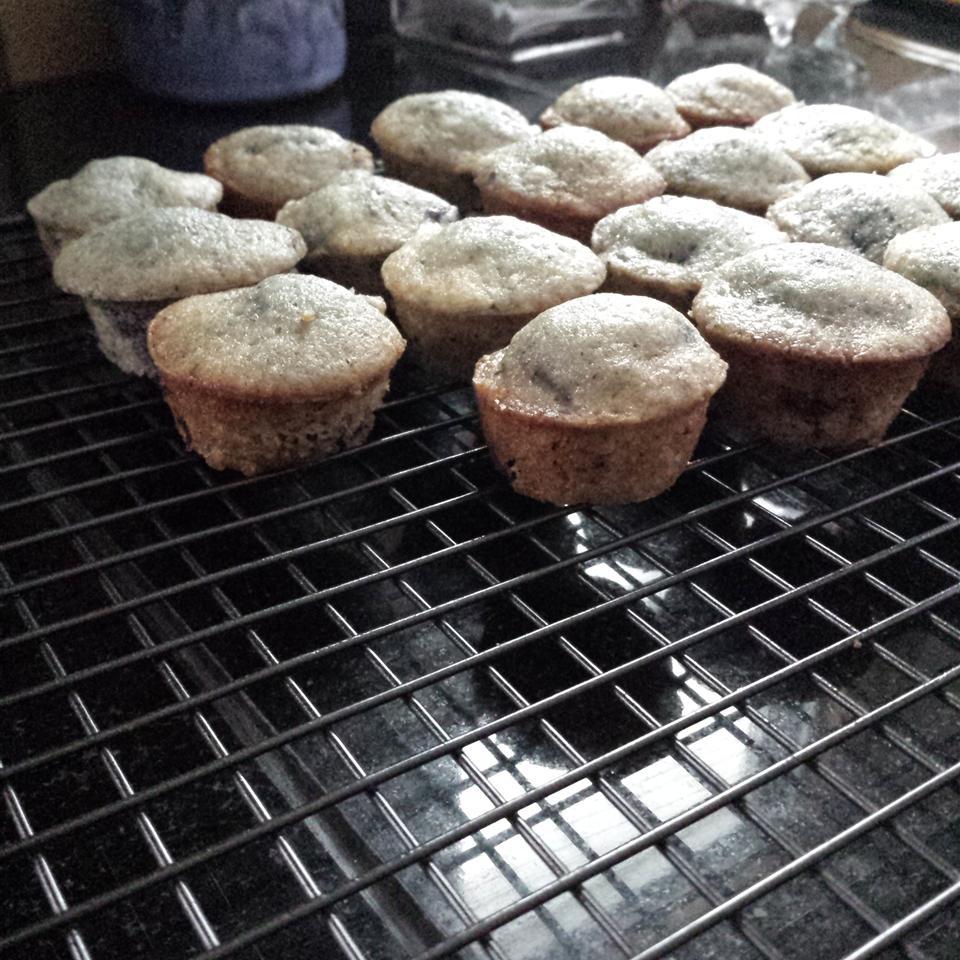 Alienated Blueberry Muffins SuzanneValerie