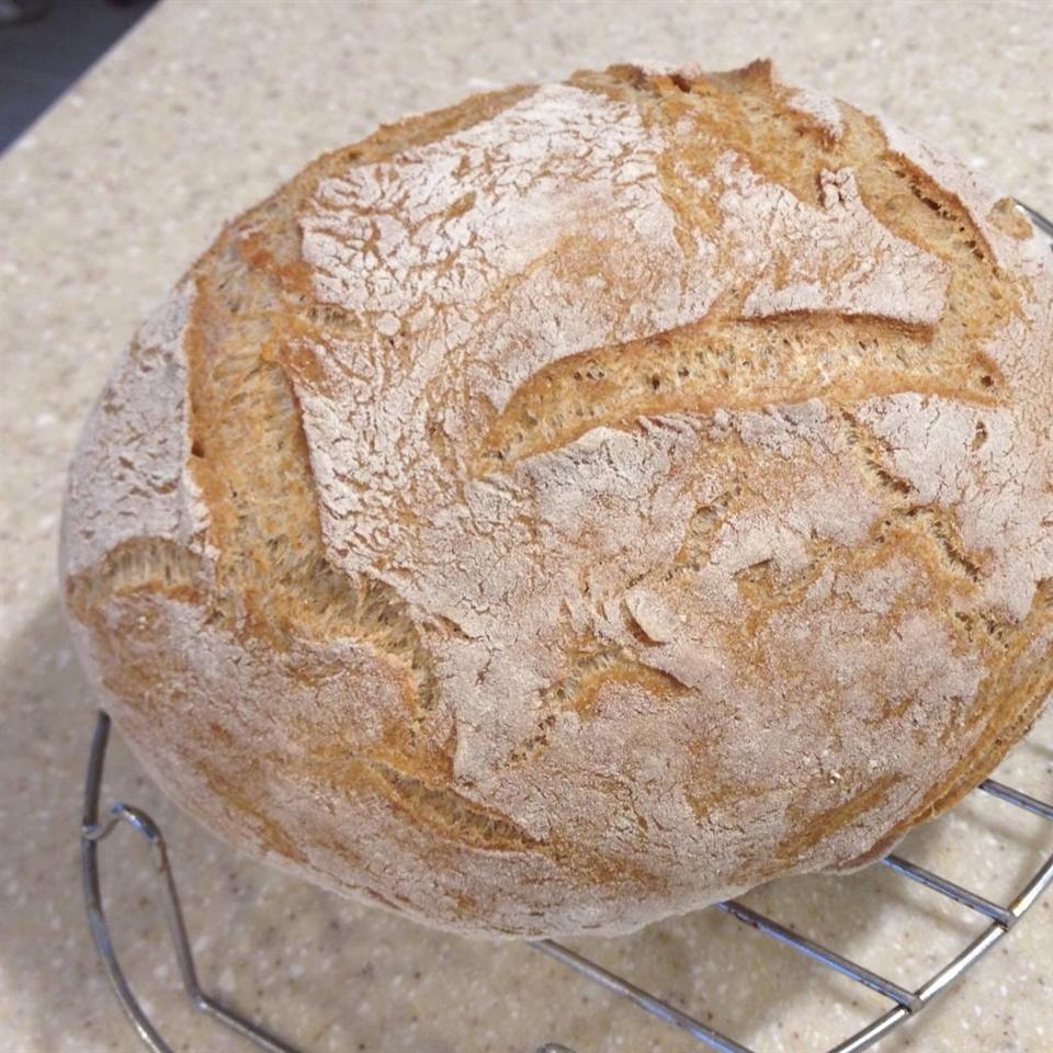 Dutch Oven Whole Wheat Bread