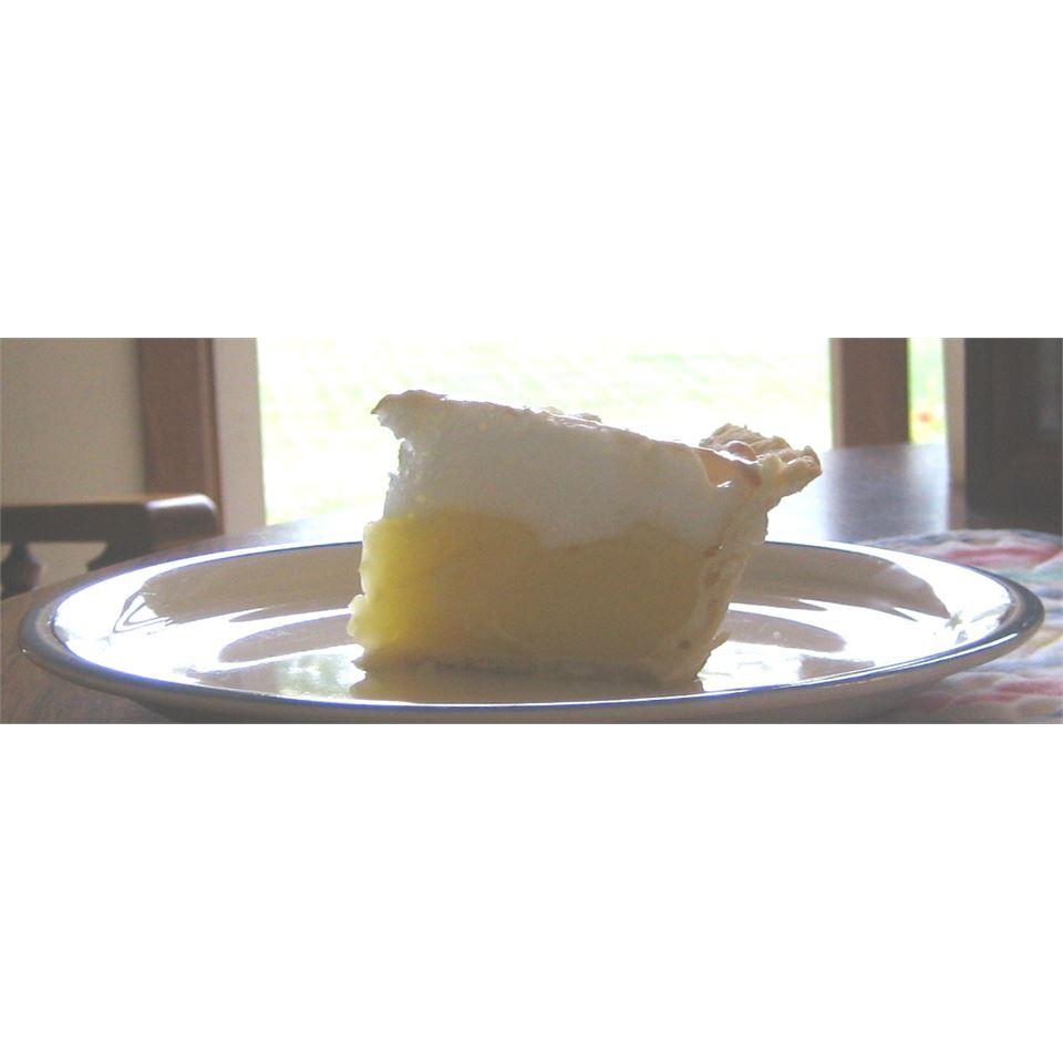 Key Lime Pie VI Elisa Sue