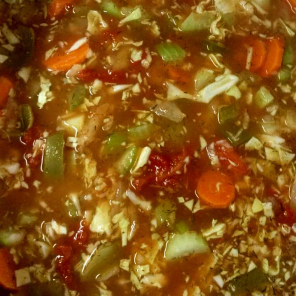 Fat-Free Vegetable Soup Nicole Mahre