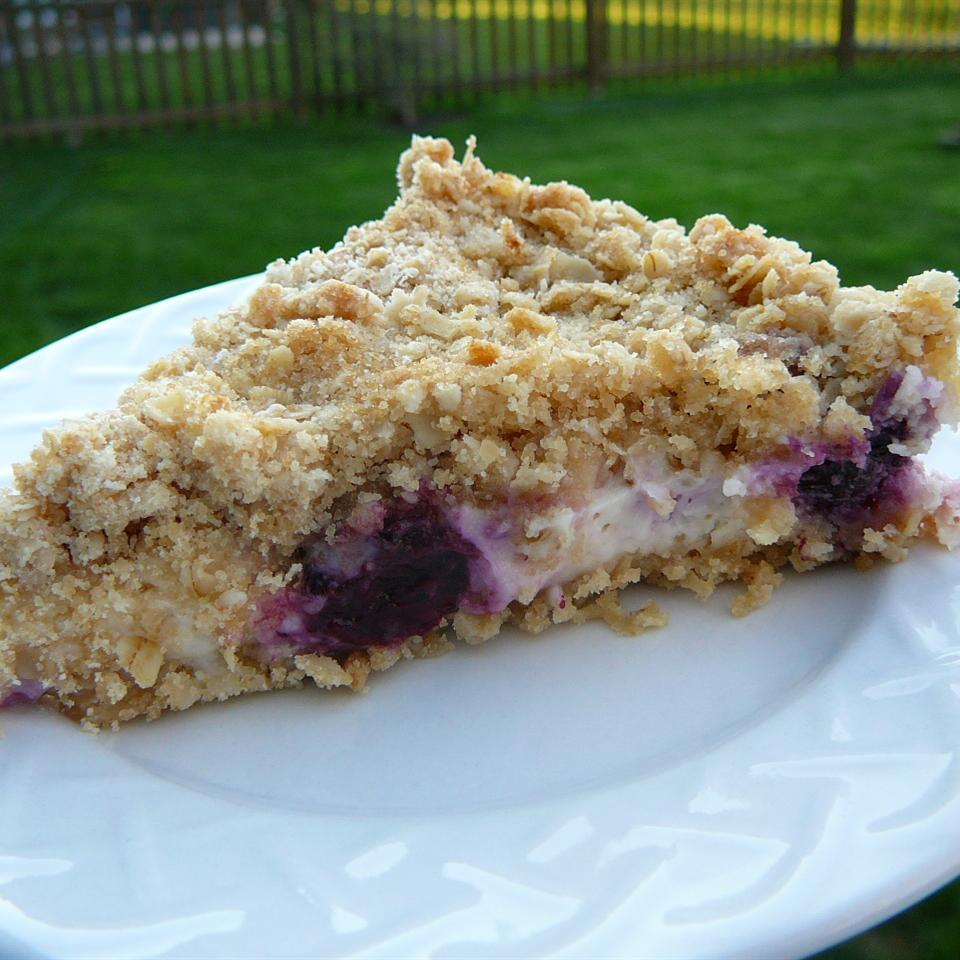 Blueberry Oat Dream Bars Molly