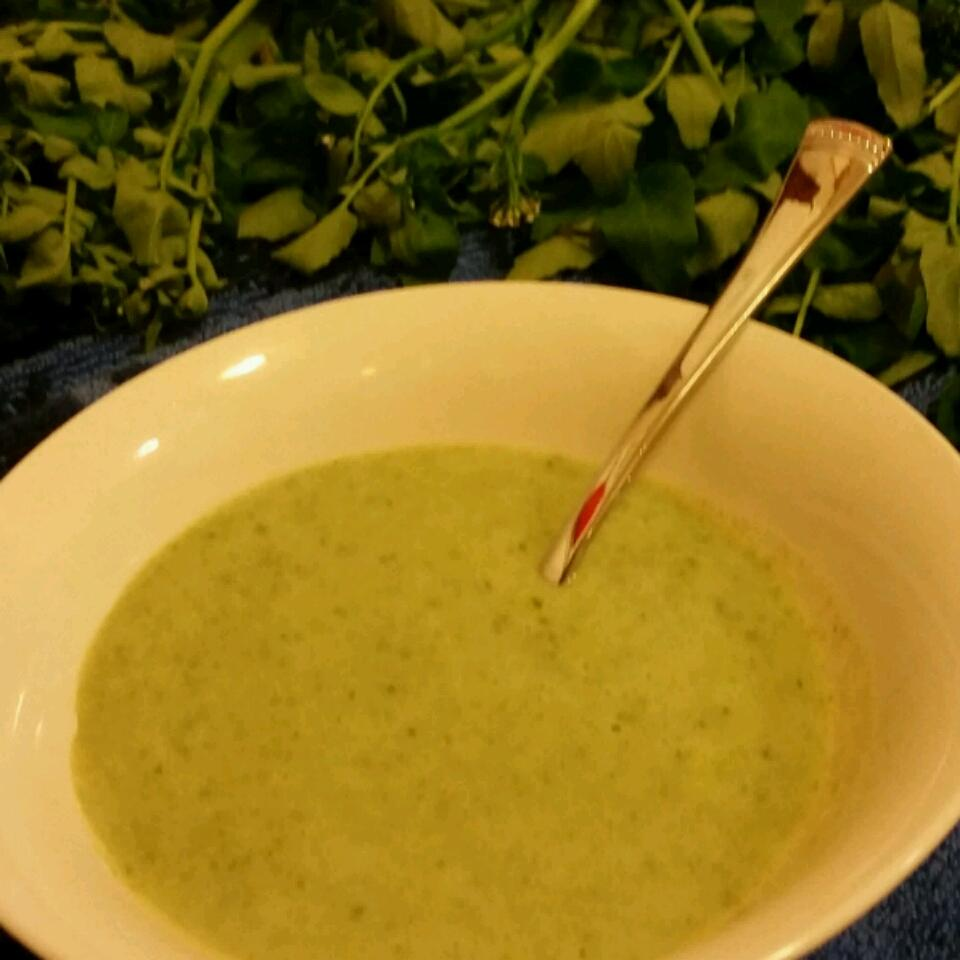 Watercress Soup Khadija Riegert