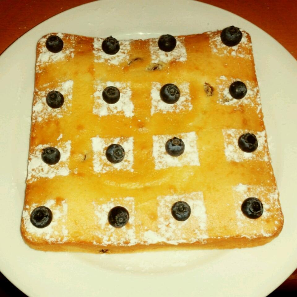 Sultana Cake ayunalizazulkernian
