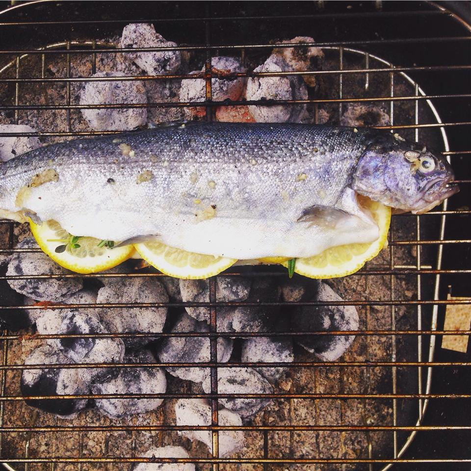 Whole Grilled Trout Kyle Mitchum