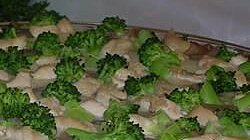 Fast and Easy Ricotta Cheese Pizza with Mushrooms, Broccoli, and Chicken