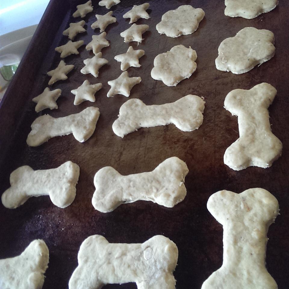 Delicious Dog Treats Sara