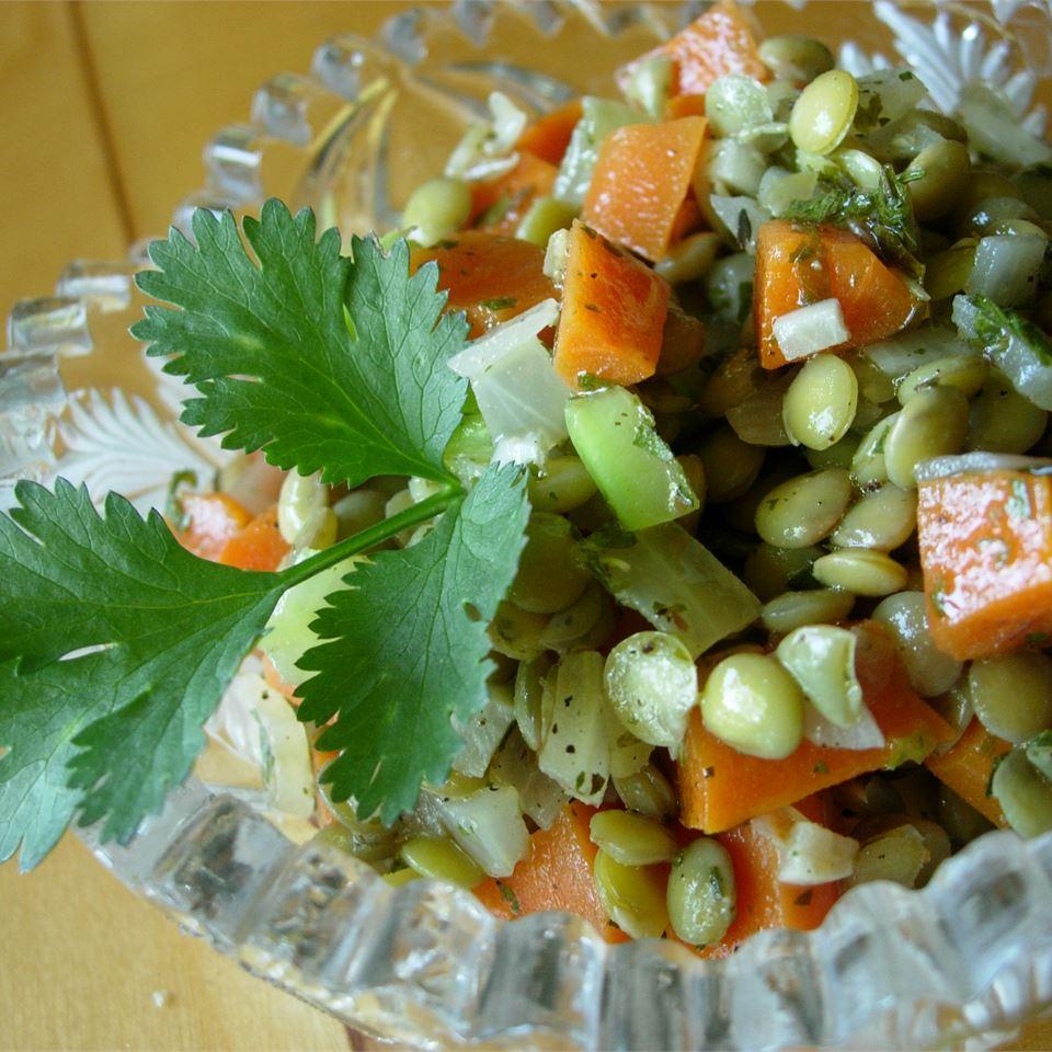 Mediterranean Lentil Salad larkspur