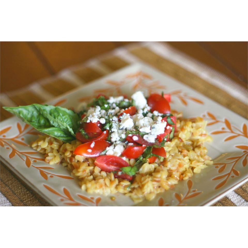 Orzo with Tomatoes, Basil, and Gorgonzola DamselDress