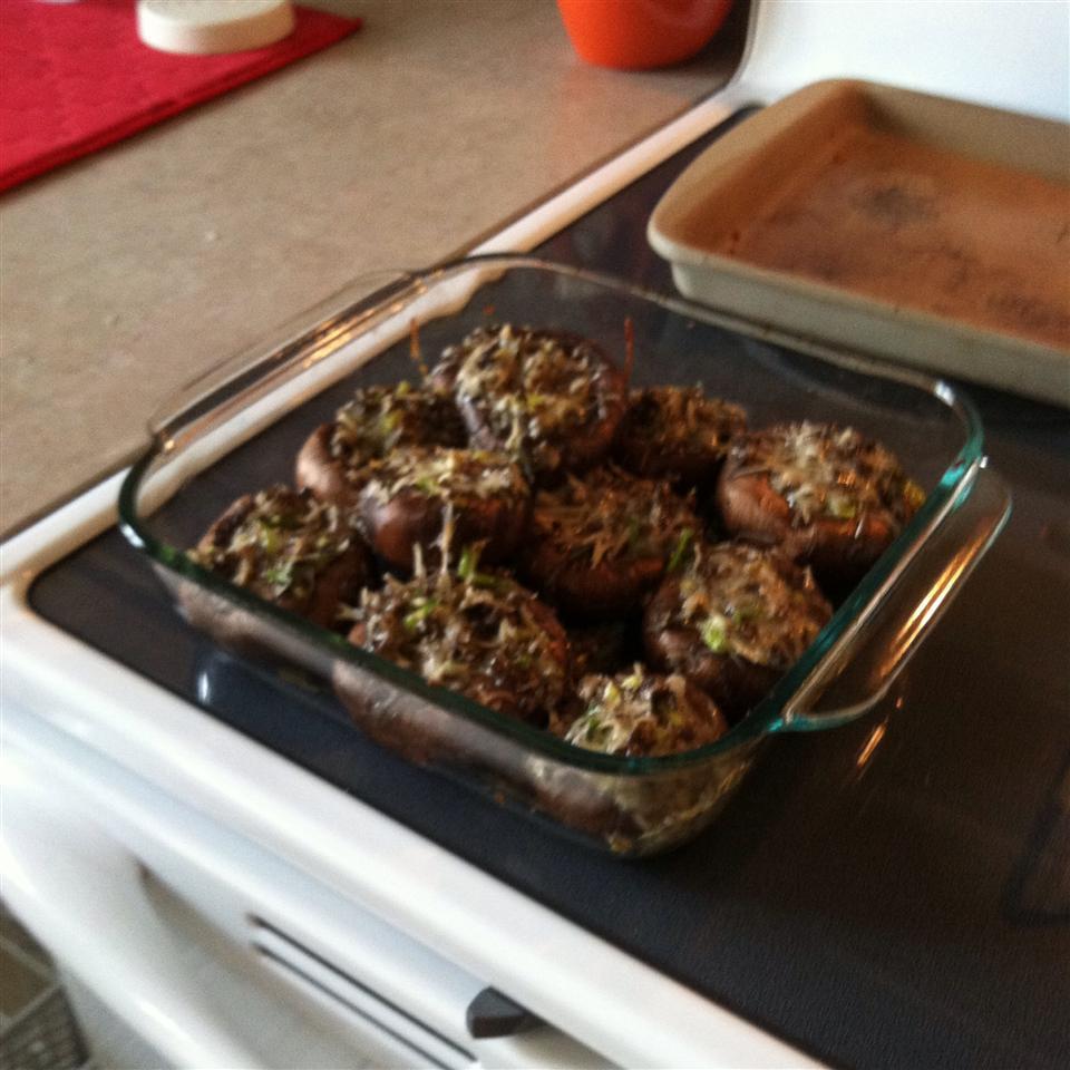 Megan's Marvelous Mushrooms jcolvin