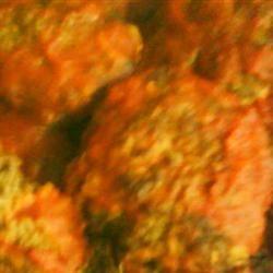 Hamburgers and Ketchup Gravy SOULFOOD_DEE