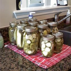 Dill Pickles 3doxiesmom