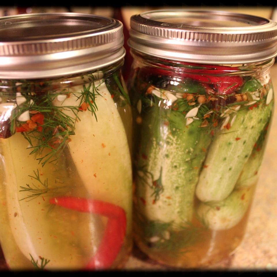 Spicy Refrigerator Dill Pickles Skeetie