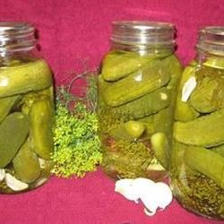 Dill Pickles CALLIEW
