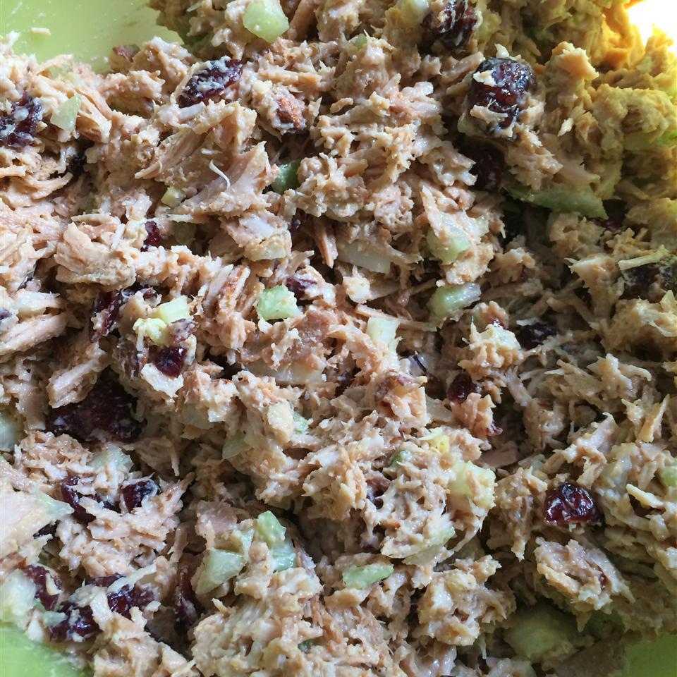 Cranberry and Turkey Salad Holly Elizabeth Gomez