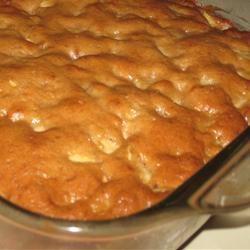 Apple Cake I Bird