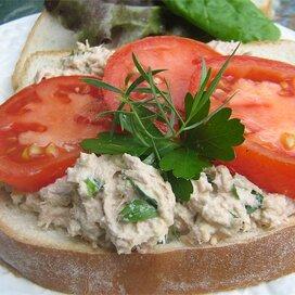 tuna sandwich recipes