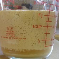 No Commercial Yeast Starter BROZZY