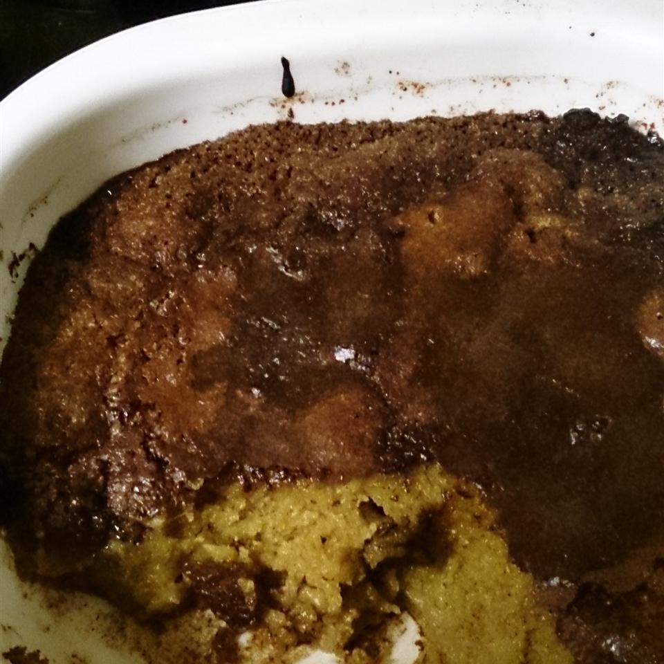Easy Baked Pumpkin Pudding Meloda