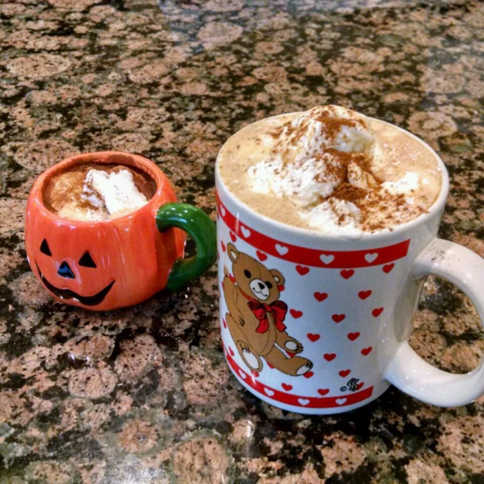 Quick Pumpkin Spice Latte Ani Schnelle