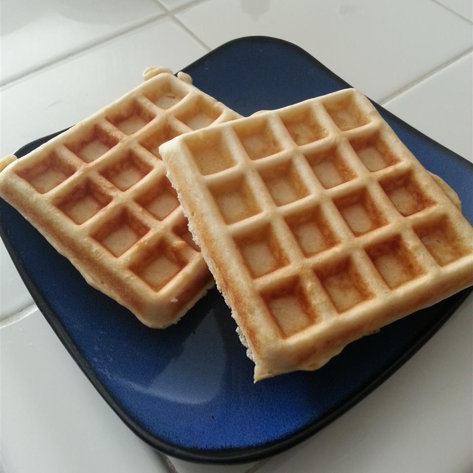Waffles II GinGin