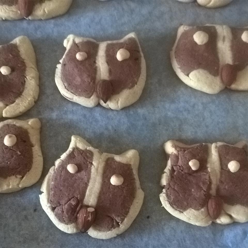 Hoot Owl Cookies Antoinette Conti