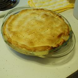 Terry's Favorite Easy Chicken Pie Abbey