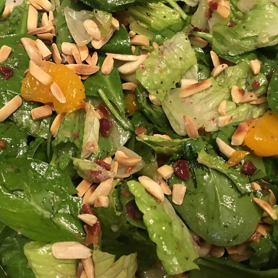 Romaine and Mandarin Orange Salad with Poppy Seed Dressing Raio De Luz