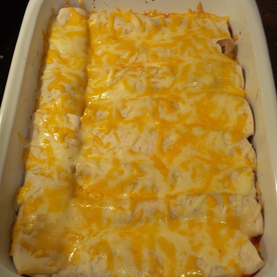Easy Enchiladas DTKay