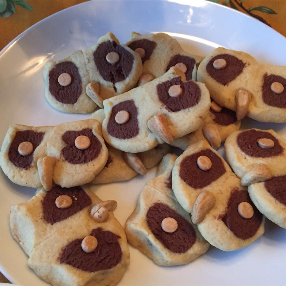 Hoot Owl Cookies Sophia