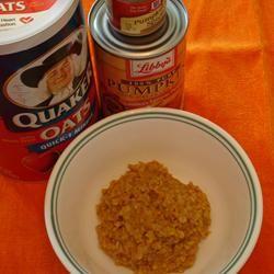 Pumpkin Oatmeal greenbabby