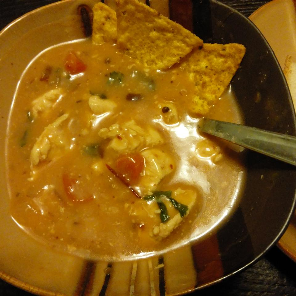 Chipotle Pepper and Chicken Soup FoxiBrown