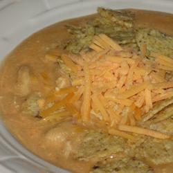 Chicken Enchilada Soup II