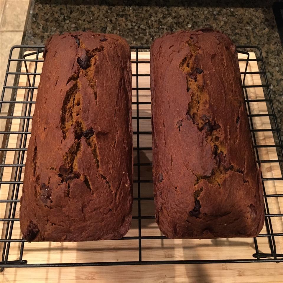 Holiday Chocolate Chip Pumpkin Bread