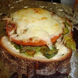 Most Excellent Sandwich arp22tx
